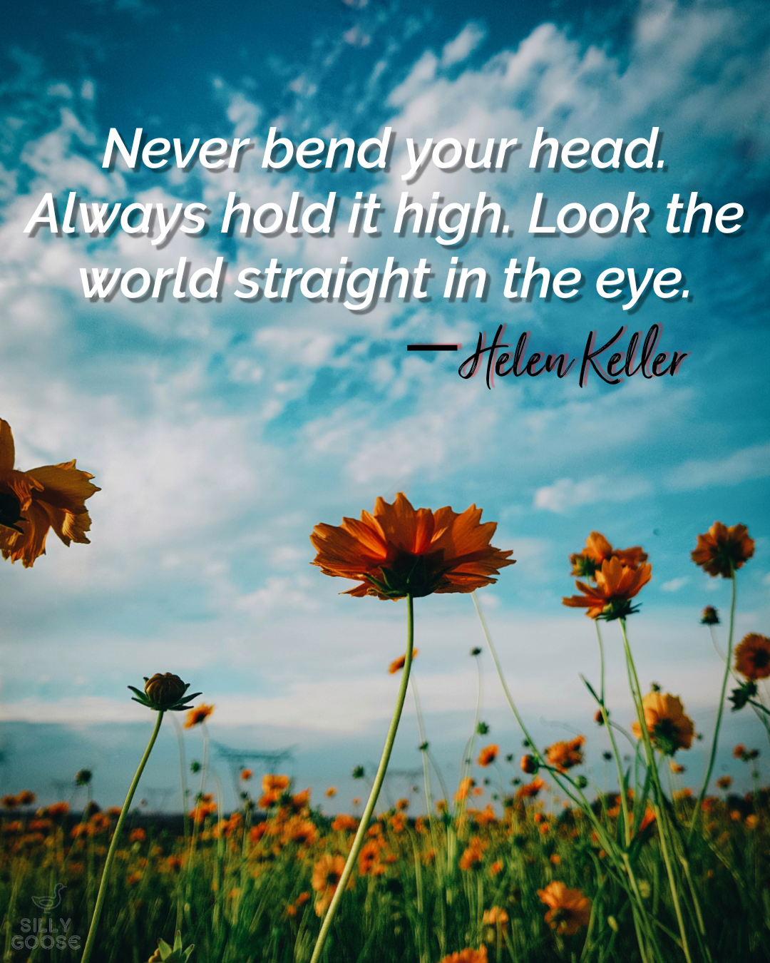 """Never bend your head. Always hold it high. Look the world straight in the eye."" —Helen Keller [1080×1350]"