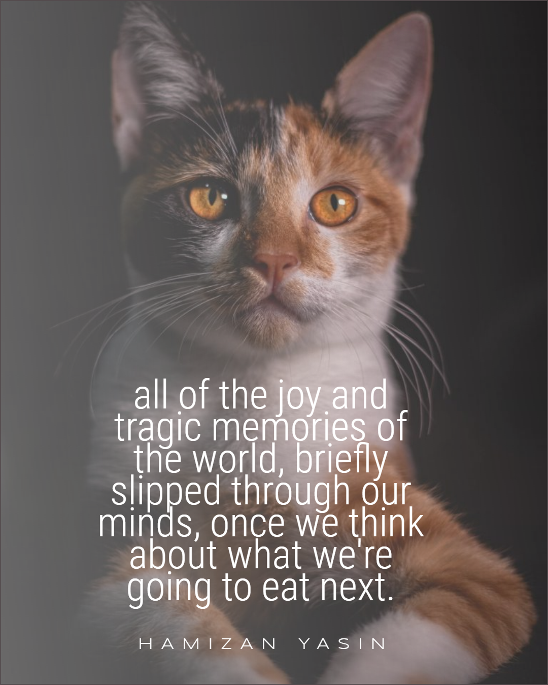 all of the joy and tragic memories of the world, briefly slipped through our minds, once we think about what we're going to eat next. – HAMIZAN YASIN [1800 x 1350]