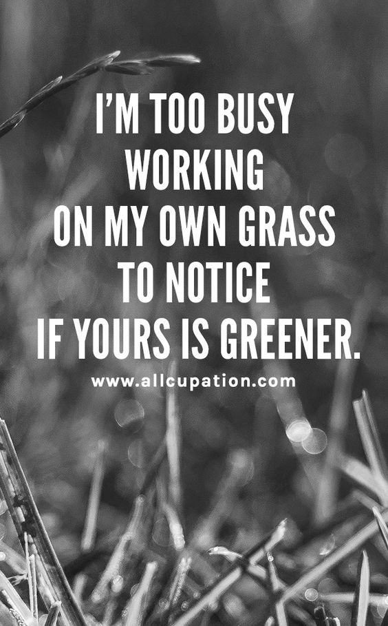[Image] I'm too busy working on my own grass to notice if yours is greener.
