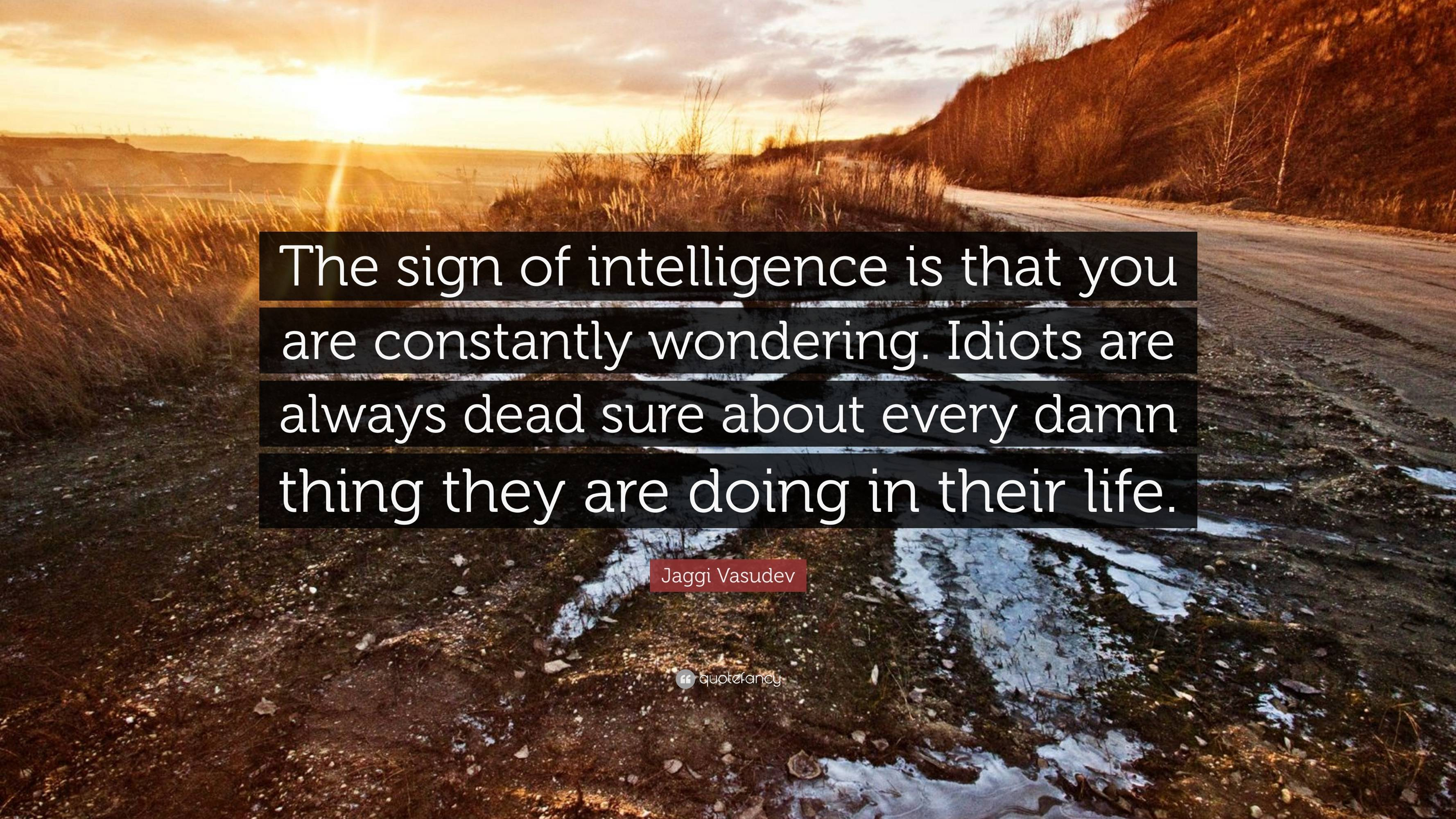 """The sign of intelligence is that you are constantly wondering. Idiots are always dead sure about every damn things they are doing in their life"" — Jaggi Vasudev [3840 x 2160]"
