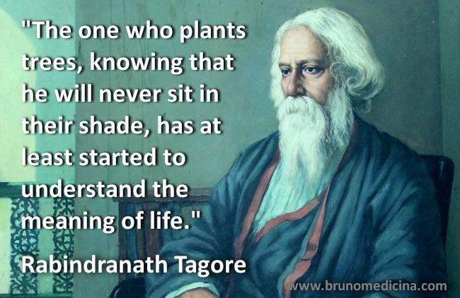 """The one who plants trees, knowing that he will never sit in their shade, has at least started to understand the meaning of life."" Rabindranath Tagore [650 X 422]"