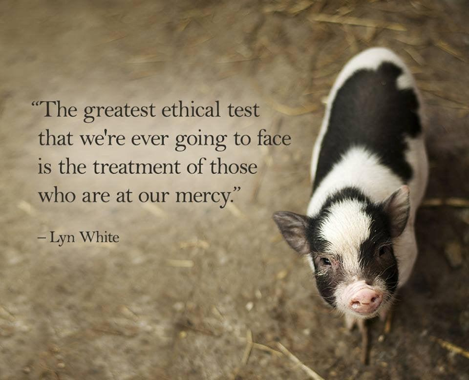 """The greatest ethical test that we're ever going to face is the treatment of those who are at our mercy."" – Lyn White [960×778]"