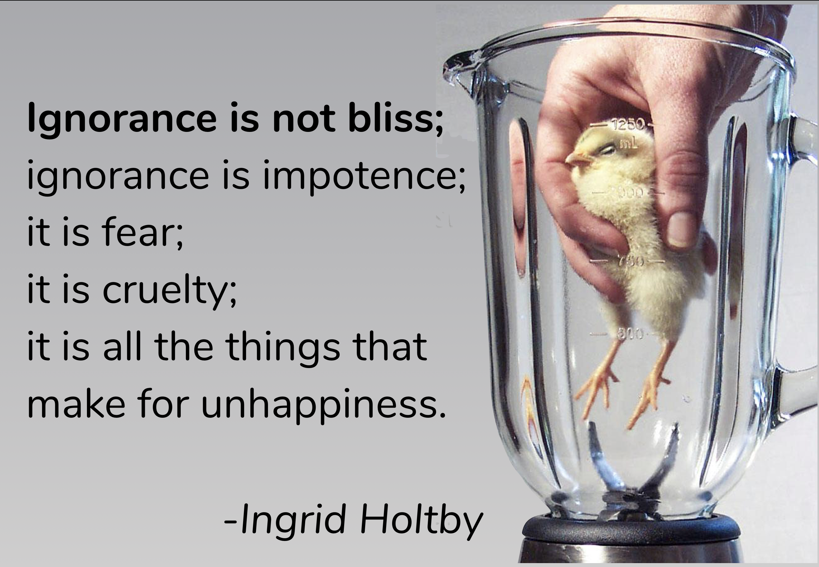 Ignorance is not bliss; ignorance is impotence; it is fear; it is cruelty; it is all the things that make for unhappiness. – Ingrid Holtby [2732 × 1892]