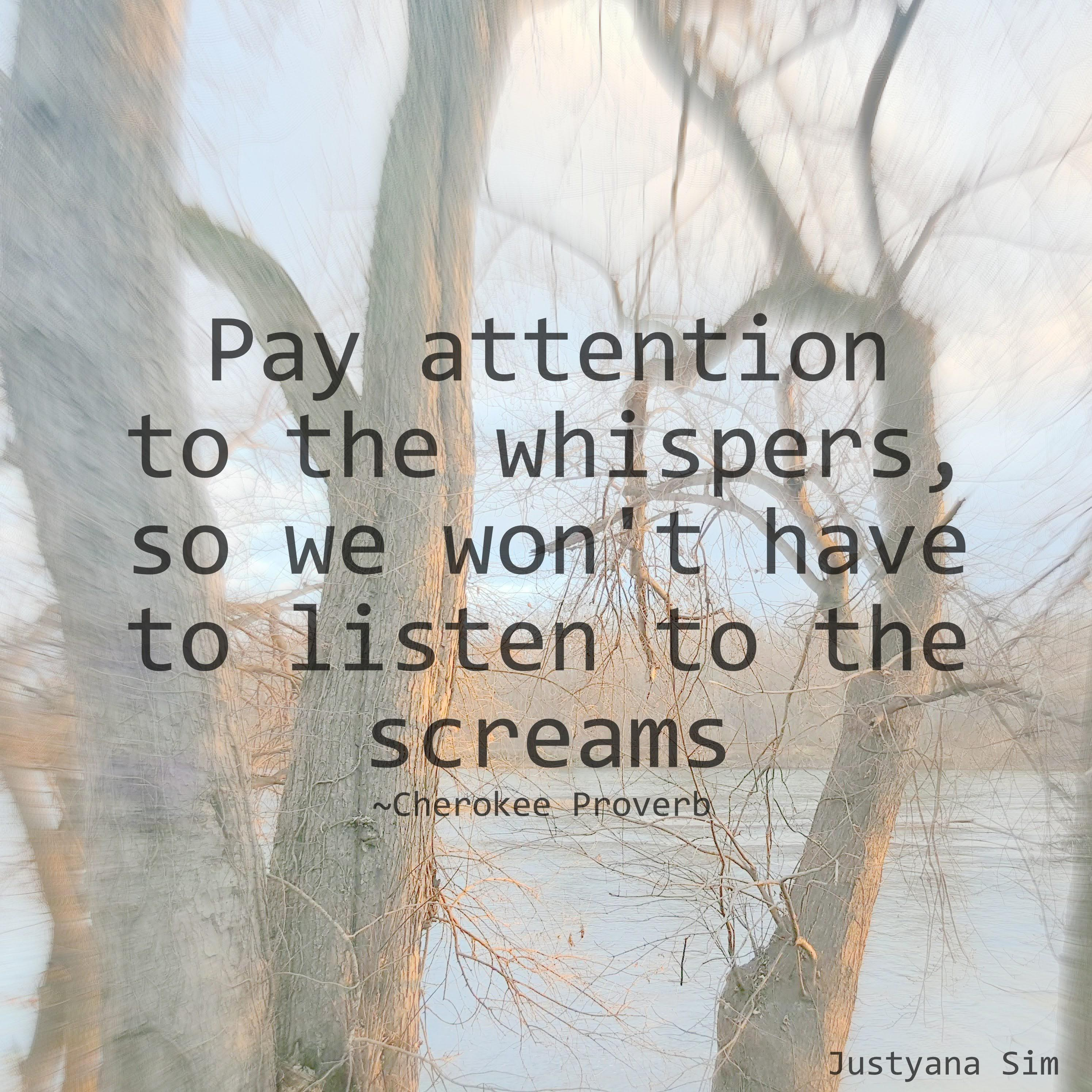 Pay attention to the whispers, so we won't have to listen to the screams. -Cherokee proverb (2989×2988)