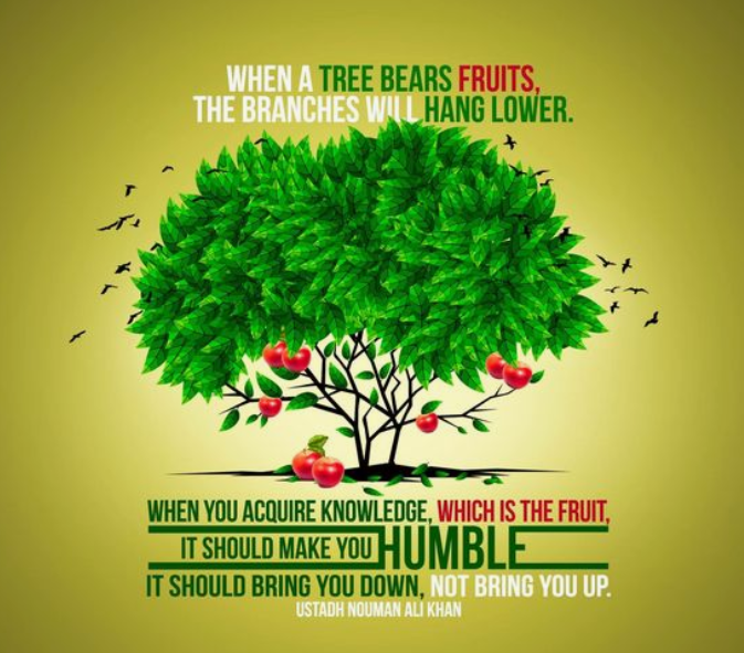 """When a tree bears fruits, the branches will hand lower. When you acquire knowledge, which is the fruit, it should make you humble…"" -Nouman Ali Khan [1512×1512]"