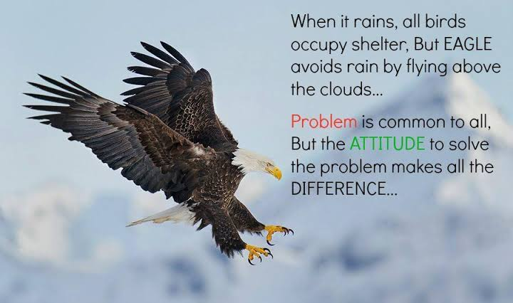 [Image] All Birds find shelter during a rain. But Eagle avoids rain by flying above the Clouds. Problems are common, but attitude makes the difference!