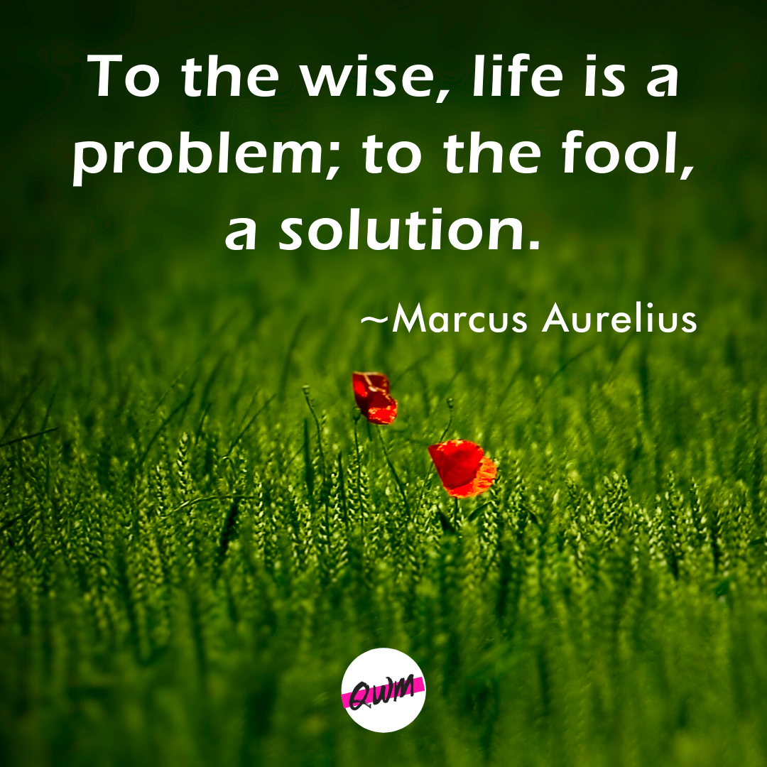 """To The wise, life is a problem; to the fool a solution. "" ~Marcus Aurelius [1080×1080]"