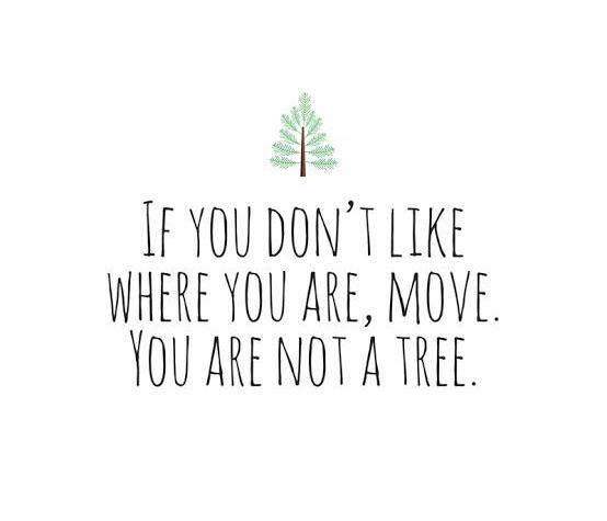 [Image] If you don't like where you are…