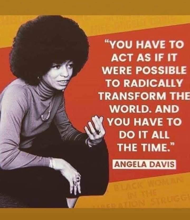 """You have to act as if it were possible to radically transform the world. And you have to do it all the time."" Angela Davis [720×835]"