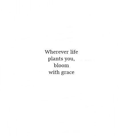 Wherever life plants you ,bloom with grace [426×476]