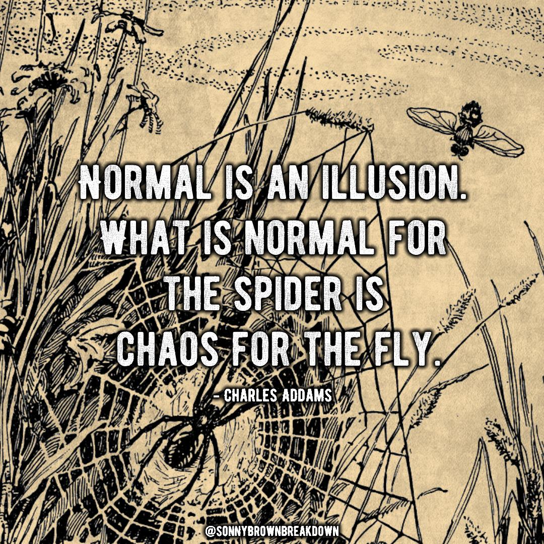 """Normal is an illusion. What is normal for the spider is chaos for the fly."" – Charles Addams [1080*1080]"