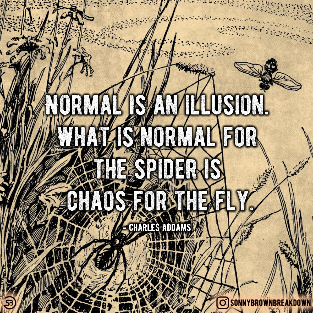 Normal is an illusion … [image]