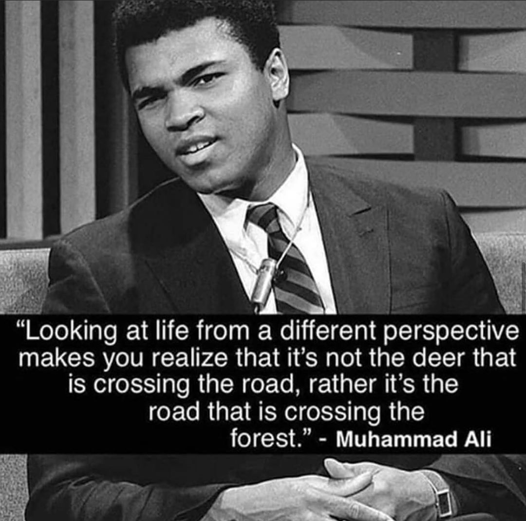 """Looking at life from a different perspective makes you realize that it's not the deer that is crossing the road, rather it's the road that is crossing the forest."" – Muhammad Ali [1080 * 1070]"