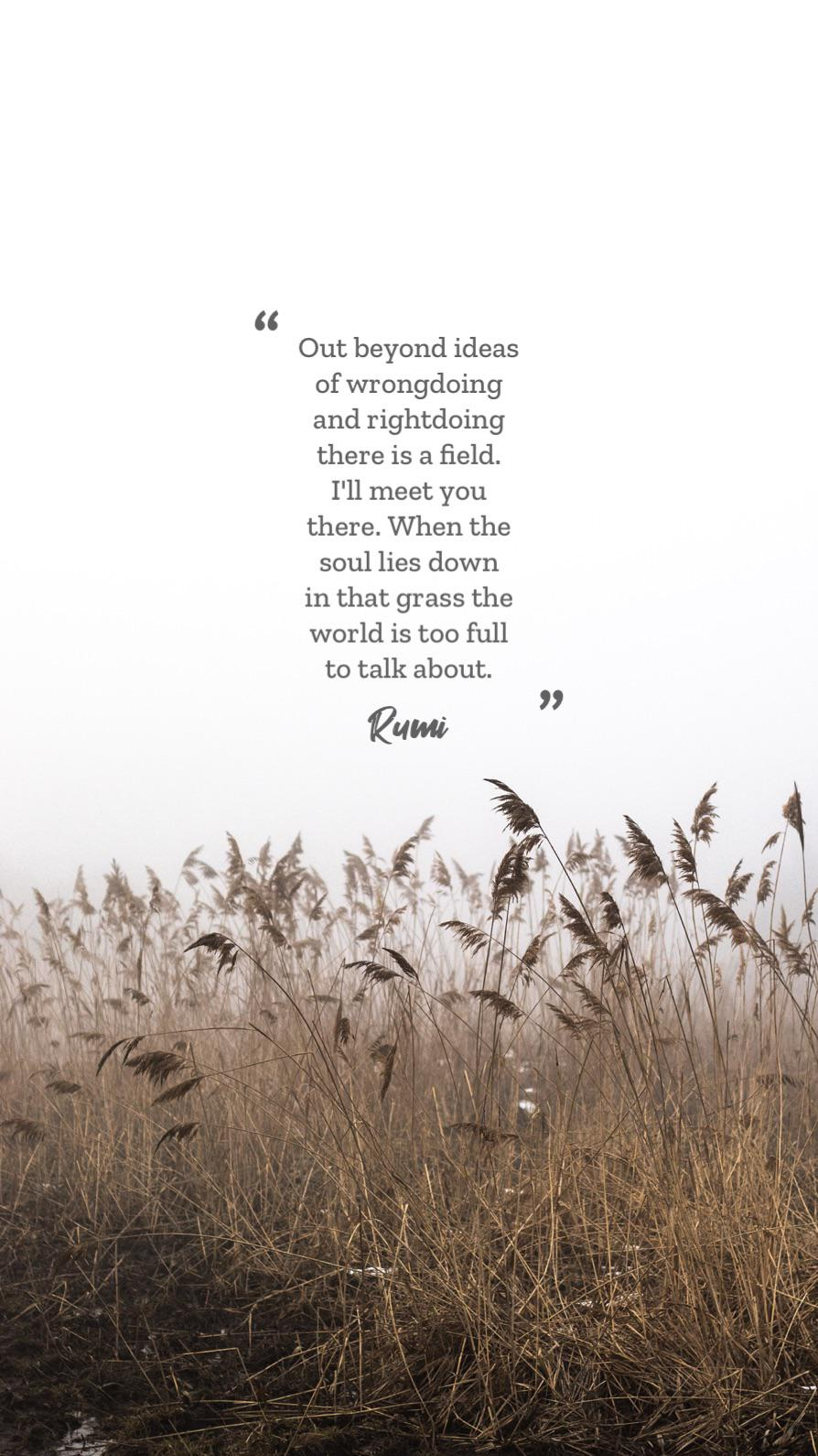""" Out beyond ideas of wrongdoing and rightdoing there is a field. I'll meet you there. When the soul lies down in that grass the world is too full to talk about. https://inspirational.ly"