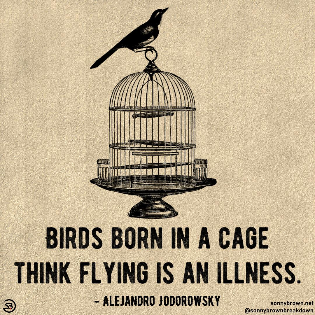 "[Image] ""Birds born in a cage think flying is an illness."""