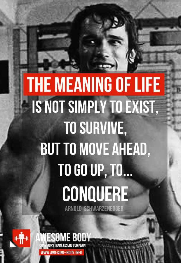 """The meaning of life is not simply to exist. To survive. But to move ahead. To go up. To achieve. To conquer"" – Arnold Schwarzenegger [620×900]"