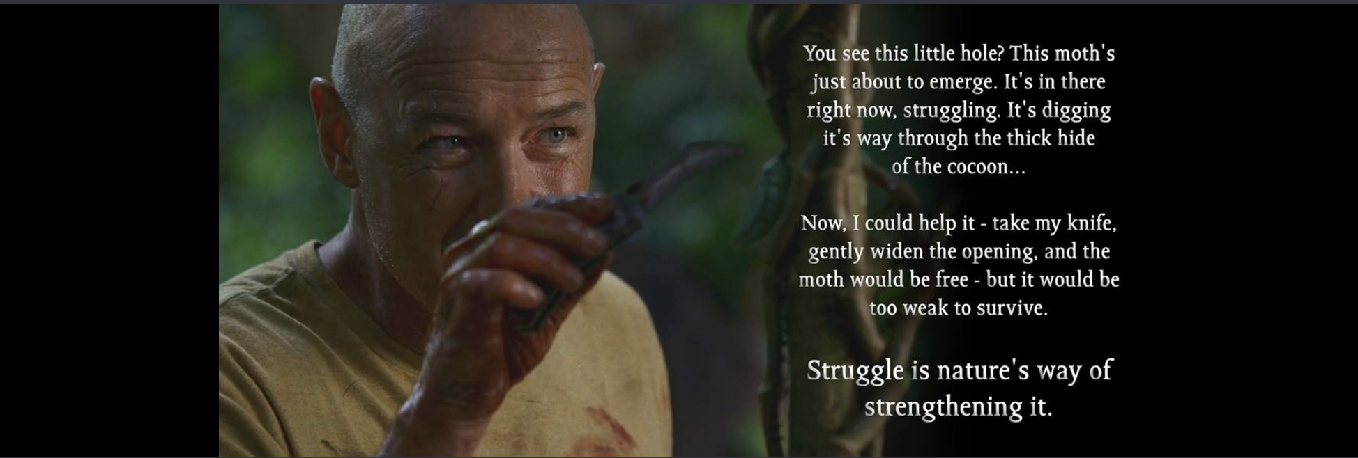 [Image] Struggle is nature's way of strengthening
