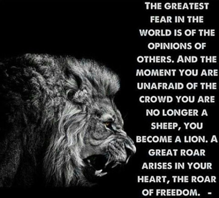 [Image] The greatest fear in the world is of the opinions of others.