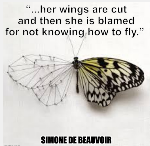 """…her wings are cut and then she is blamed for not knowing how to fly."" ― Simone de Beauvoir, The Second Sex [612 × 597]"