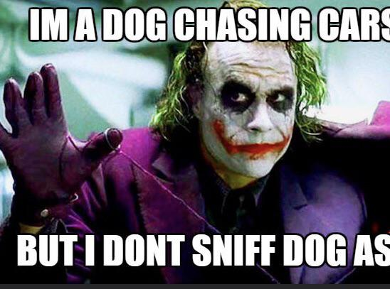 """I'm dog chasing cars but i dont sniff no dog ass tho"" -joker [976X768]"