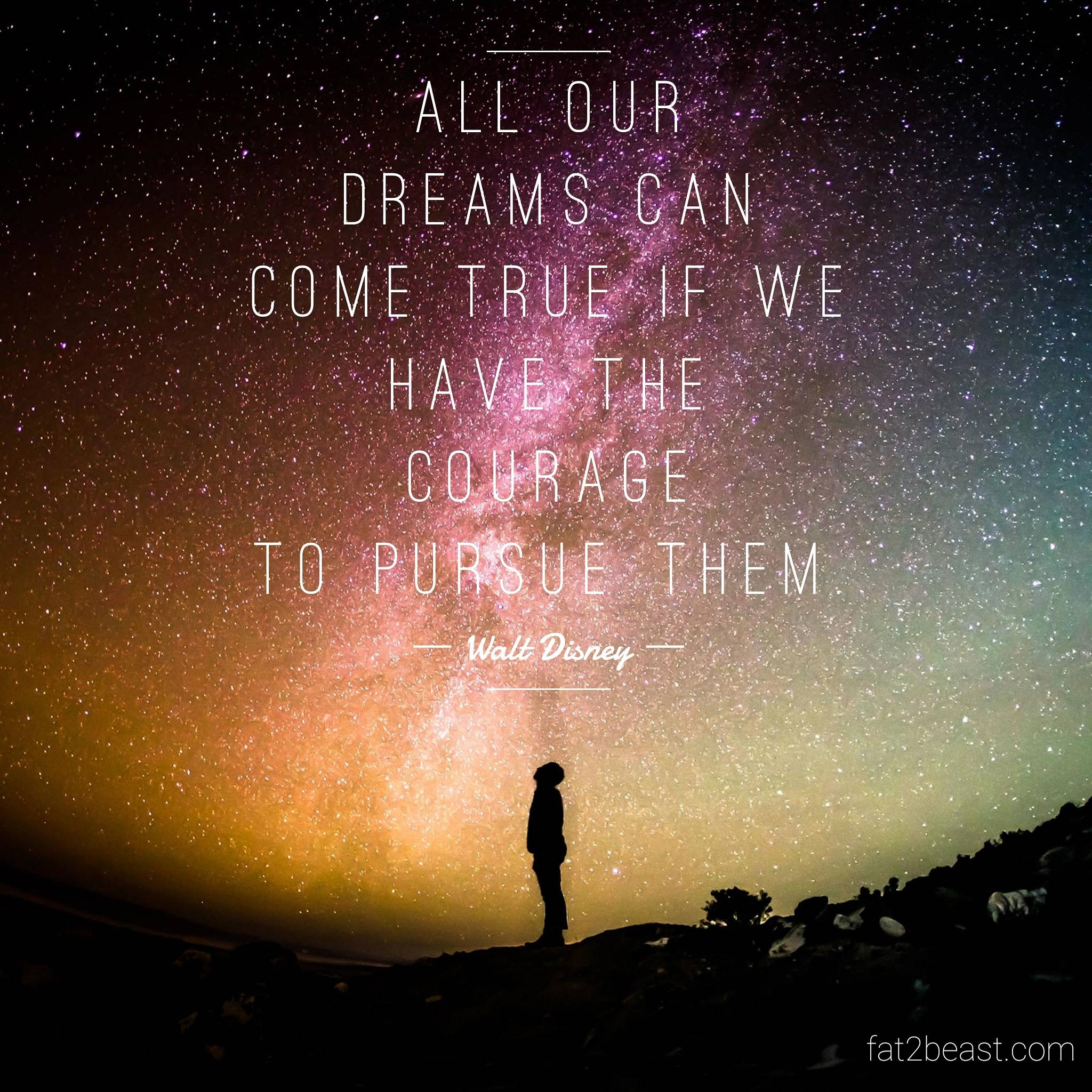 [IMAGE] All our dreams can come true if we have the courage to pursue them
