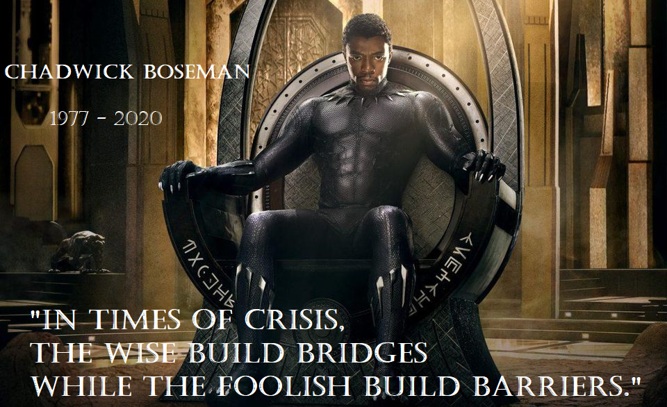 Chadwick Boseman, 'Black Panther' Star, Dies at 43. This quote is pretty relevant these days