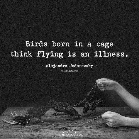 """Birds born in a cage think flying is an illness."" -Alejandro Jodorowsky [72×72]"