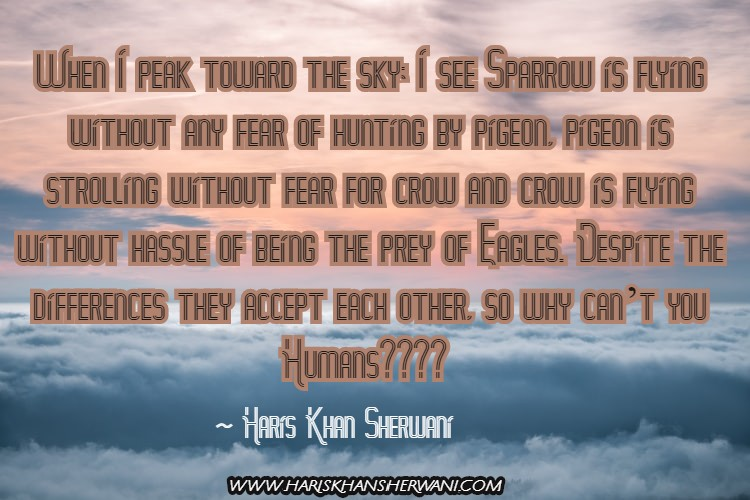 [Image] When I peak toward the sky; I see Sparrow is flying without any fear of hunting by pigeon, a pigeon is strolling without fear for crow and crow is flying without hassle of being the prey of Eagles. Despite the differences they accept each other, so why can't you Humans? ~ Haris Khan Sherwani
