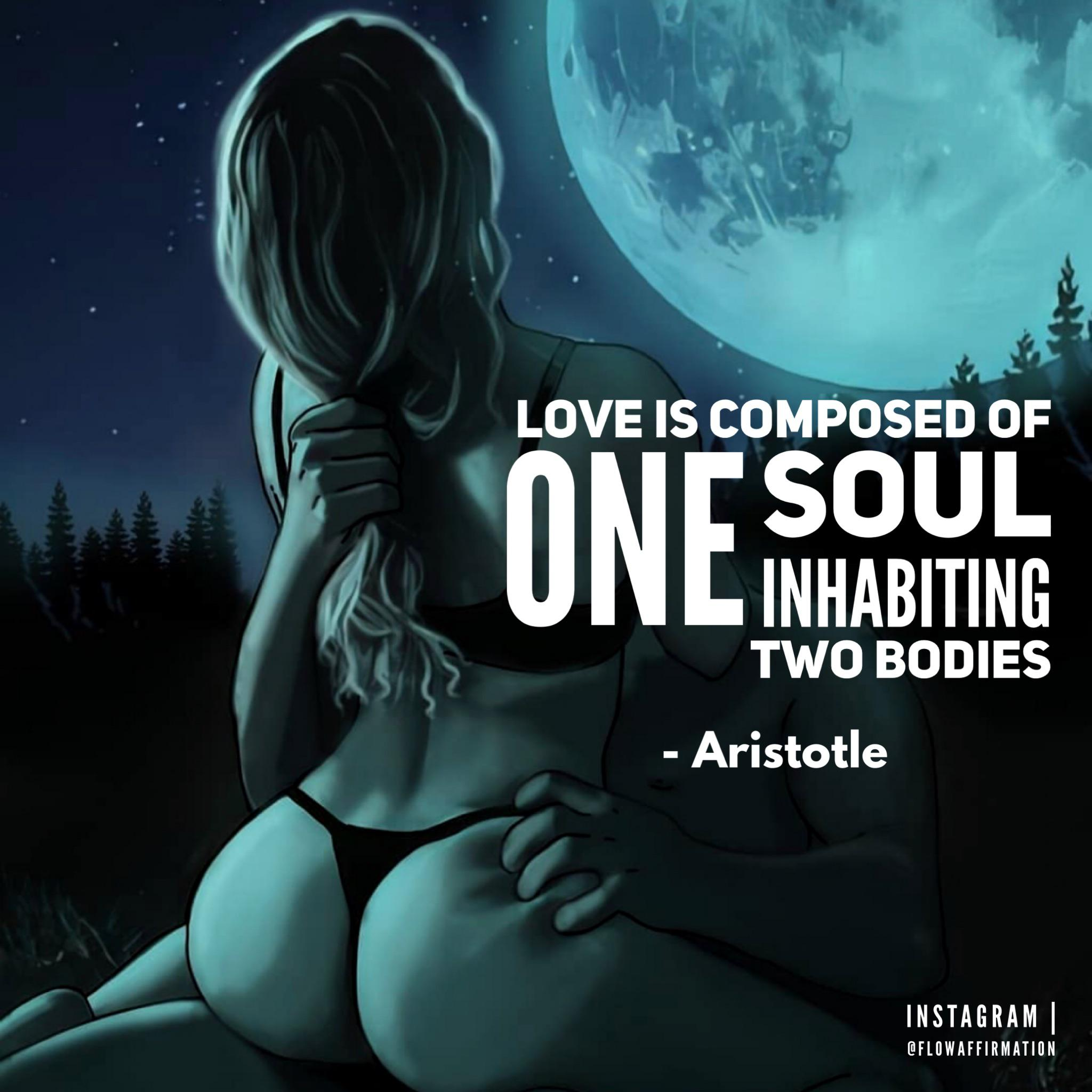 Love is composed of One soul inhabiting two bodies – Aristotle [1080 x 1080] px