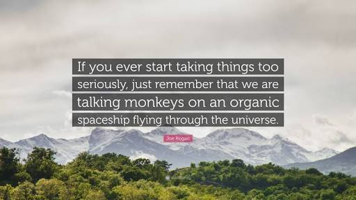 """If you ever start taking things too seriously, just remember that we are talking monkeys on an organic spaceship flying through the universe""-Joe Rogan [512×288]"