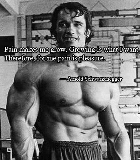 """Pain makes me grow, growing is what I want. Therefore, for me pain is my pleasure"" ~Arnold Schwarzenegger [450×516]"