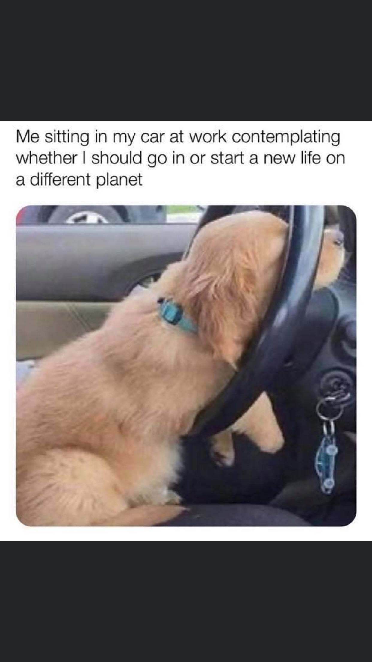 """lVle sitting in my car at work contemplating whether I should go in or start a new life on a different planet L l]: .;':'~3._1 """"""""' ' https://inspirational.ly"""
