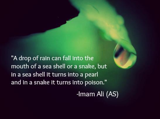 My favorite quote from Imam Ali Ibn Abu Talib(547×409)