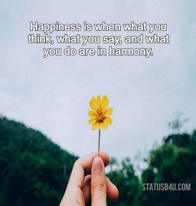 """Happiness is when what you think, what you say, and what you do are in harmony. "" – Mahatma Gandhi [420×400]"