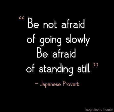 Be not afraid of going slowly , be afraid of standing still . ~ Japanese Proverb (445×436)