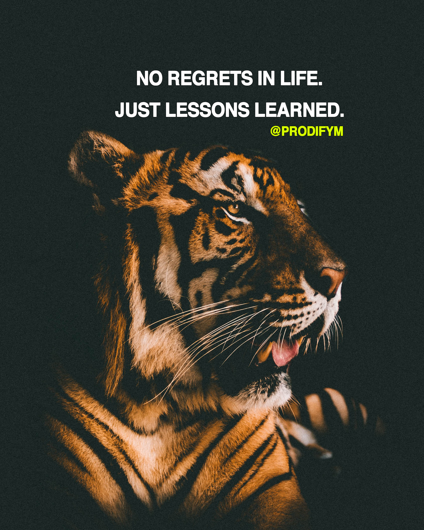 "[image]""No regrets in life. Just lessons learned."""