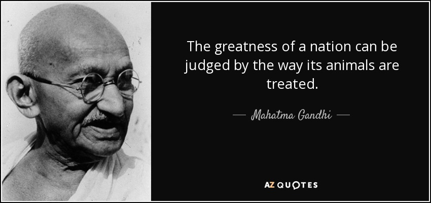 """The greatness of a nation can be judged by the way its animals are treated."" – Mahatma Gandhi [850*400]"