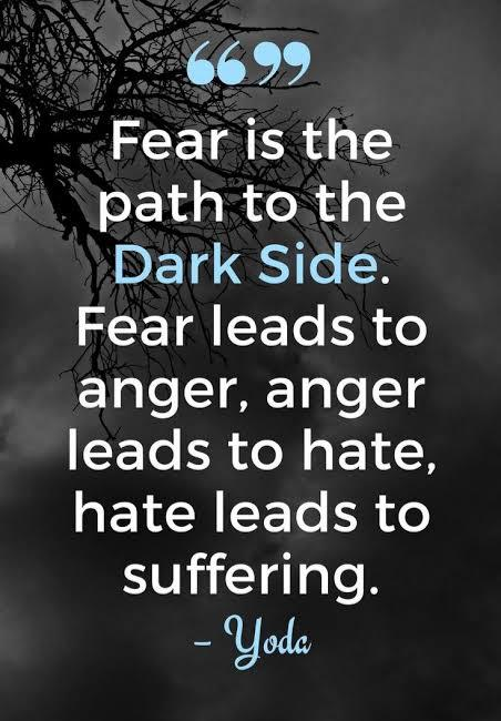 """Fear is the path to the Dark Side. Fear leads to anger, anger leads to hate, hate leads to suffering"" -Yoda [452×650]"