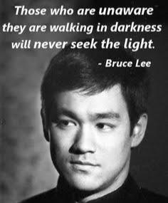 Those who are unaware , they are walking in darkness will never seek the light . ~ Bruce Lee (236×285)