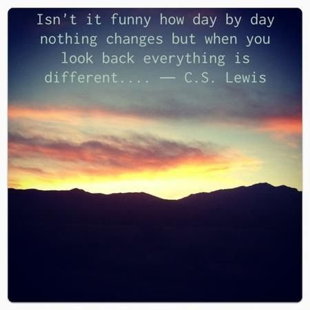 """Isn't it funny how day by day nothing changes, but when you look back, everything is different …"" – C. S. Lewis [450×450]"