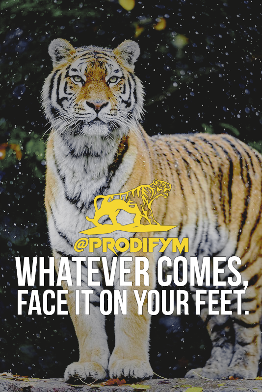 [image] Whatever comes, face it on your feet.