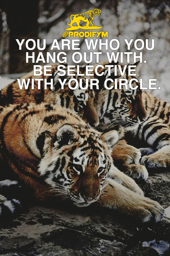 [IMAGE] You are who you hang out with. Be selective with your circle.