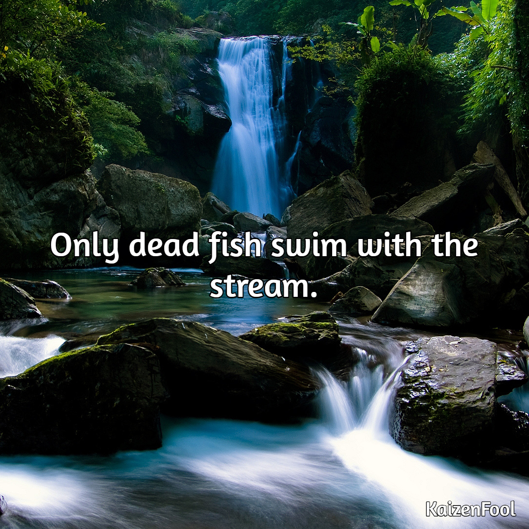 [Image] Only dead fish swim with the stream