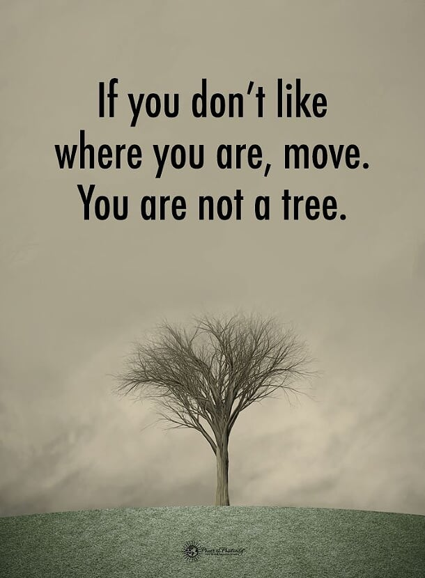 [IMAGE] You decide where you are