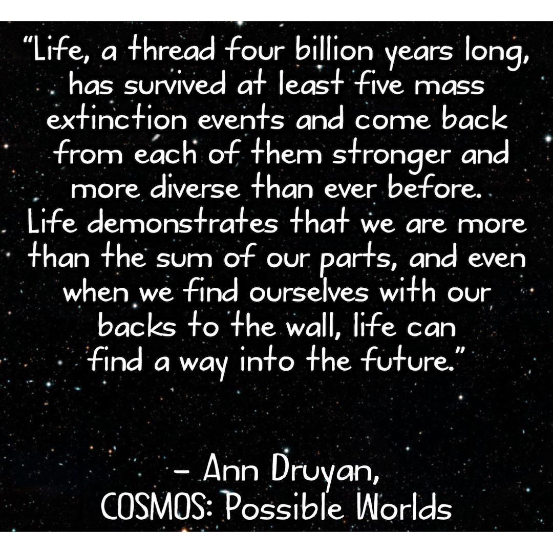 "[Image] ""Life demonstrates that we are more than the sum of our parts, and even when we find ourselves with our backs to the wall, life can find a way into the future"" – Ann Druyan"