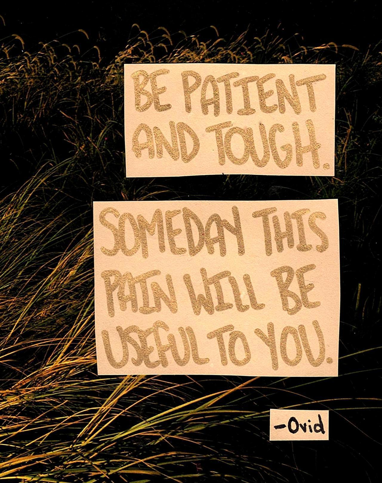 """Be patient and tough; someday this pain will be useful to you."" ― Ovid. [1280 × 1617]"