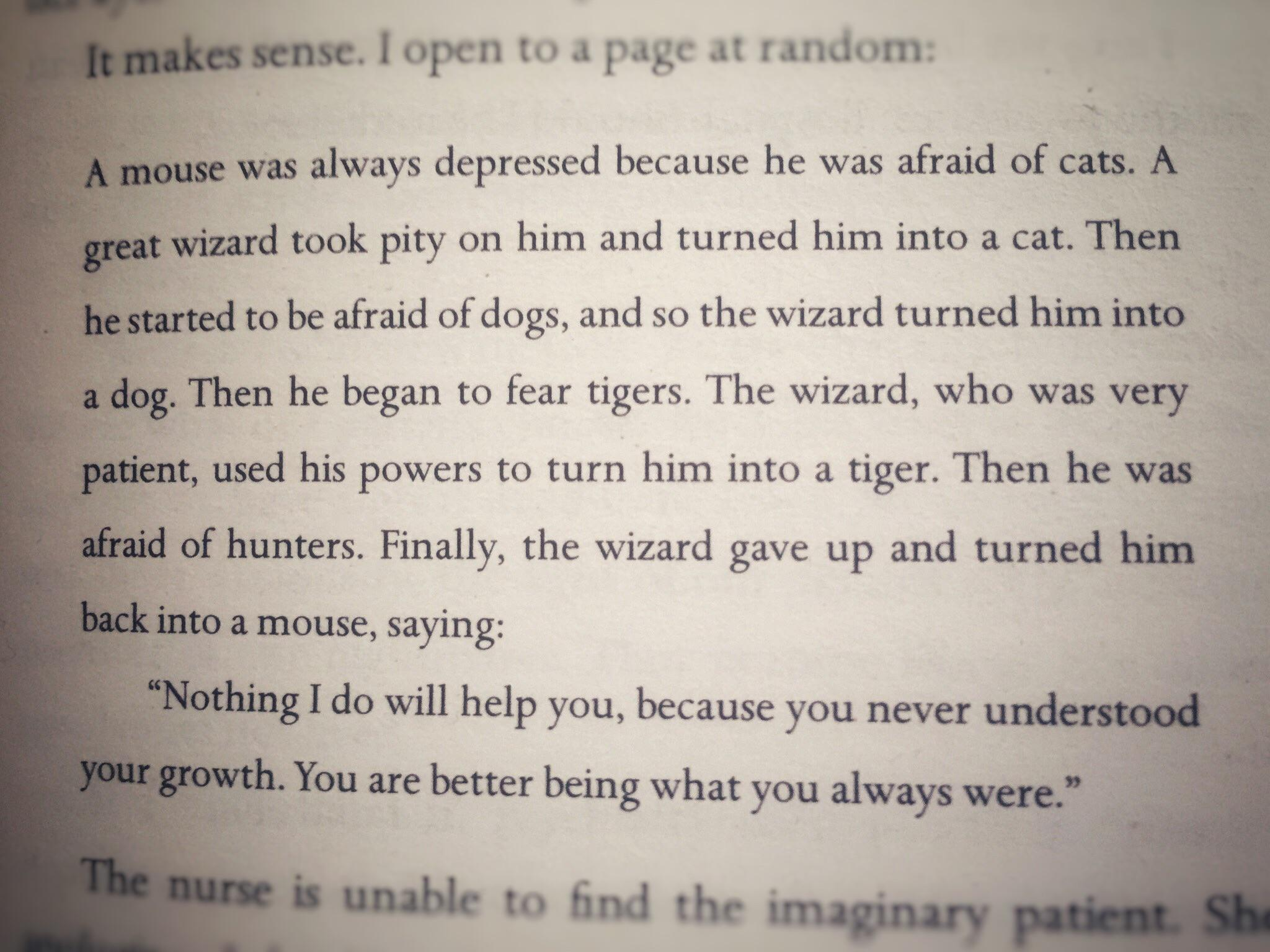 A depressed mouse – Adultery by Paulo Coelho [2048×1536]