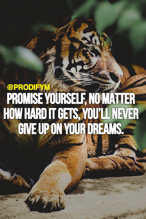 [image] Promise yourself, no matter how hard it gets, you'll never give up on your dreams.