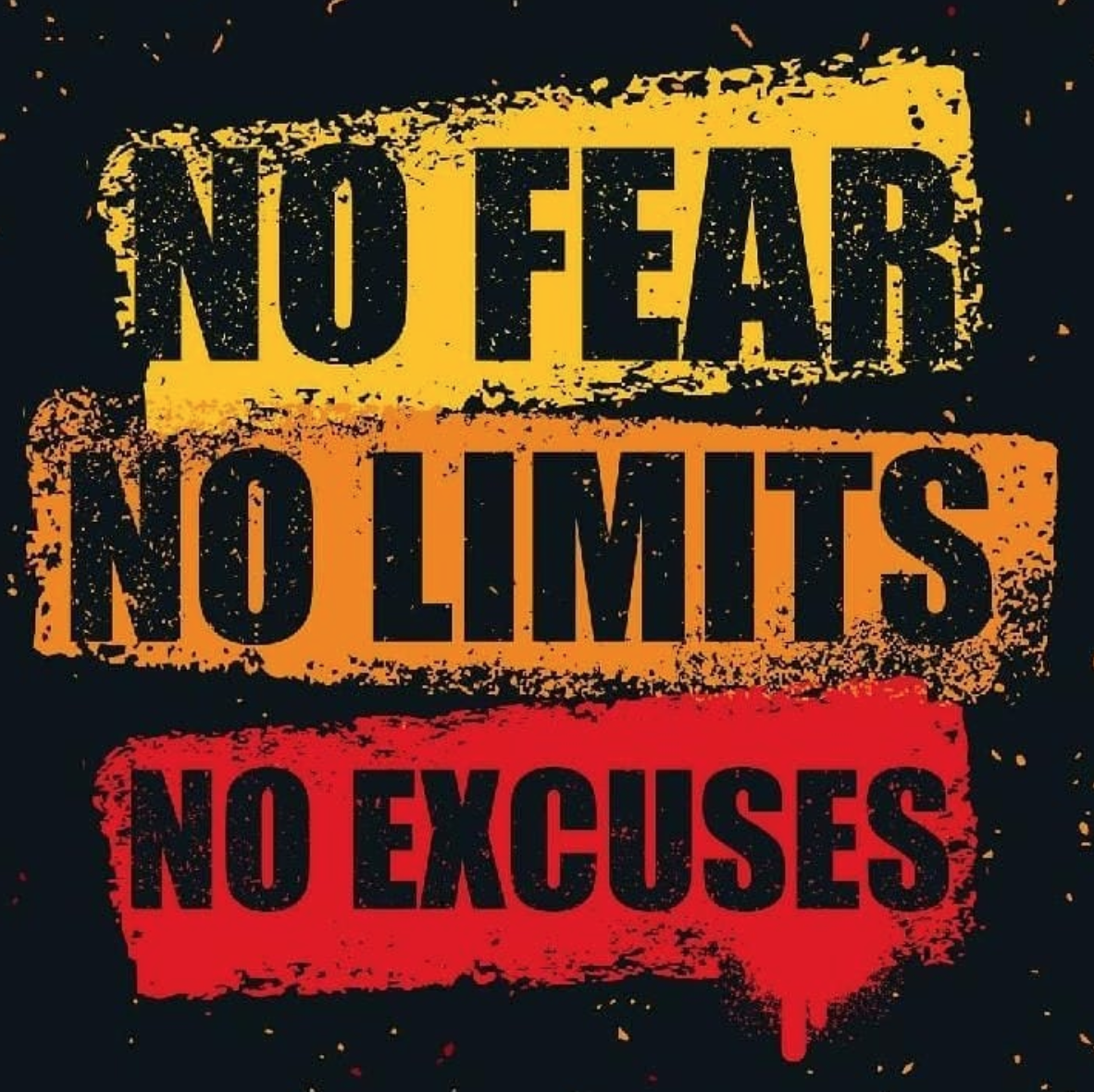[Image] No fear, no limits, no excuses, it is time to take action right now