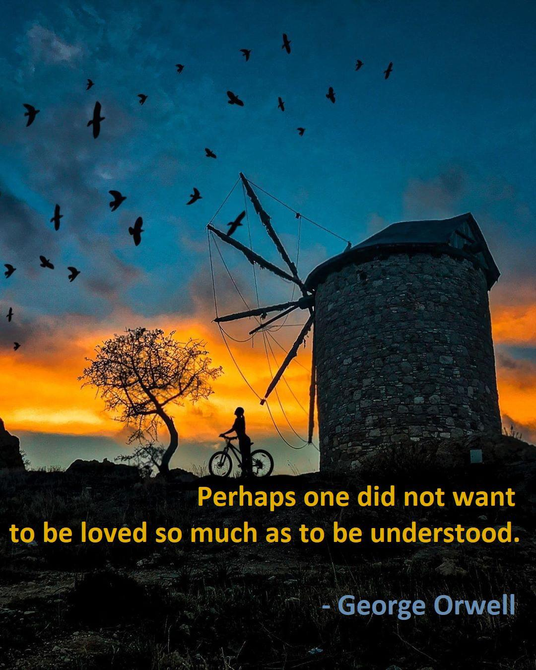 """Perhaps one did not want to be loved"" – George Orwell (1080 x 1350)"